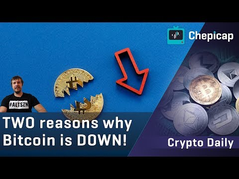 Here's why Bitcoin crashed! $10 BILLION wiped out! Could $8,000 be next? | Cryptocurrency news
