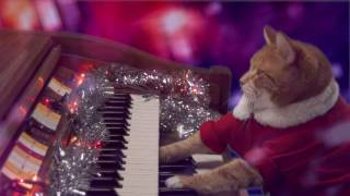 Keyboard Cat Santa is Coming to Town
