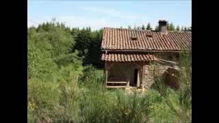 Gite de vacances / vakantiehuisje / cottage, Auvergne