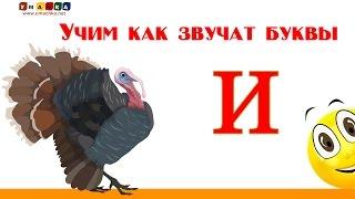 Алфавит русский Учим Буквы и Звуки с Кругляшиком - Буква И
