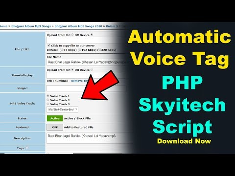Automatic Voice Tag Skyitech PHP Script - For Mp3 Download Sites