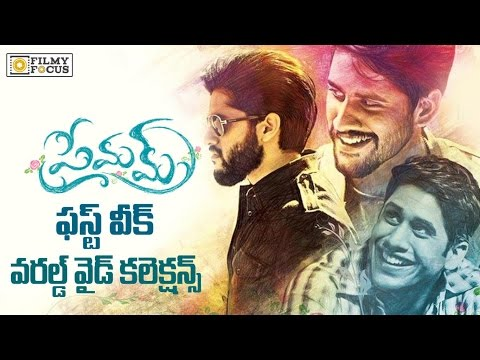 Premam Movie 1st Week Worldwide Collections || Naga Chaitanya, Shruti Haasan - Filmyfocus