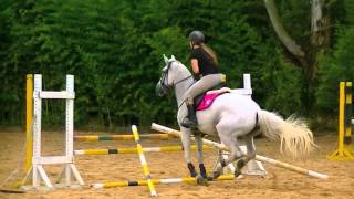 Horse Jumping - I love my horse!