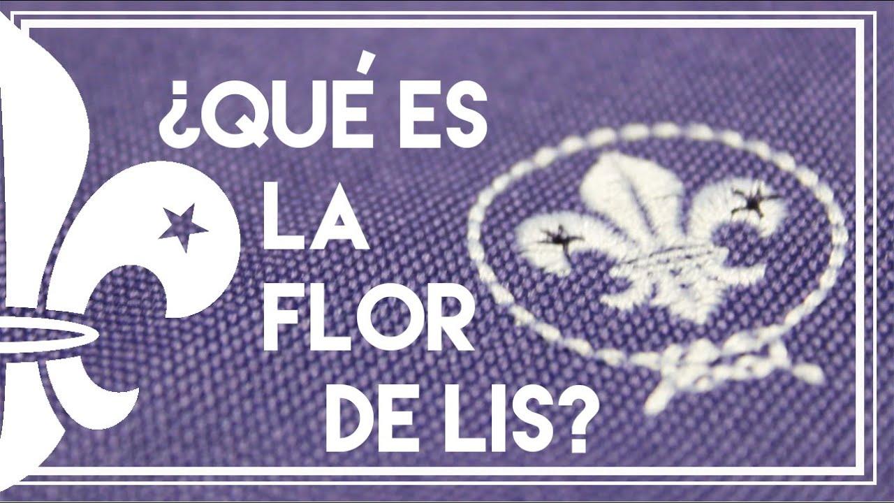 Qué Es La Flor De Lis Un Scout Youtube