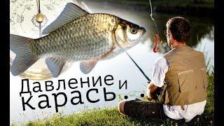 При каком давлении карась лучше клюет? Какое оптимальное давление для рыбалки на карася?