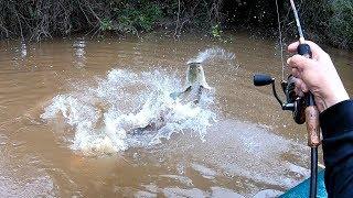 NO LUGAR CERTO, NO MOMENTO EXATO!!! Pescaria...