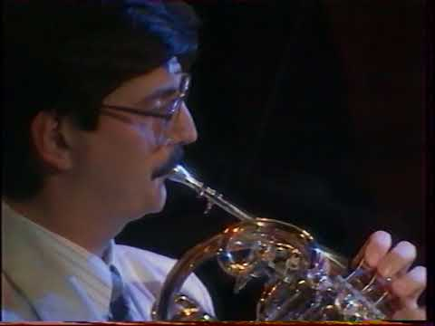 Mozart: Horn Quintet 1st.mov. Miklos Nagy