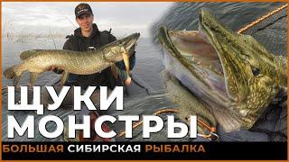 ЩУКИ МОНСТРЫ ЗАТОПЛЕНОЙ ТАЙГИ Трофейная рыбалка в СИБИРИ