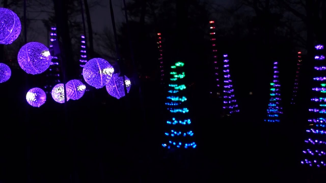 Rock Citys Enchanted Garden of Lights The Dancing Forest YouTube