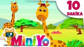 Zürafa Şarkısı + Daha Fazla Çocuk Şarkısı | Miniyo