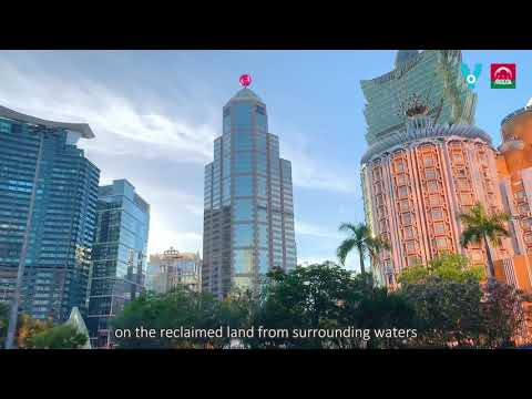 20 Impressions - Ferreira do Amaral Square