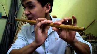 Hướng dẫn thổi sáo bài Giấc mơ trưa - Huy Hiệu /WEBSITE :.saotruchuyhieu.com