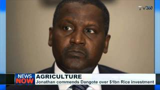 Dangote to invest $1bn in local rice production in Nigeria