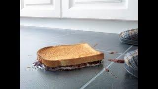 Почему бутерброд падает маслом вниз и еще 8 вопросов, которые все стеснялись задать