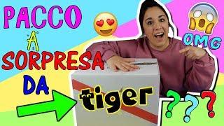 PACCO GIGANTE A SORPRESA DA TIGER! COSA CI SARA'? Iolanda Sweets