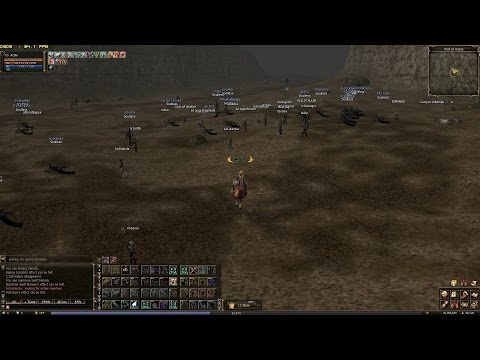 Lineage 2 | More bots than mobs - Server Naia (NC West)