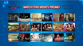Watch All Pakistani Hit Dramas Promo - Mon-Sun (Jun 1 - Jun 7)