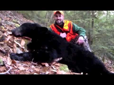 Natural Pursuit Outdoors PA Black Bear Hunt