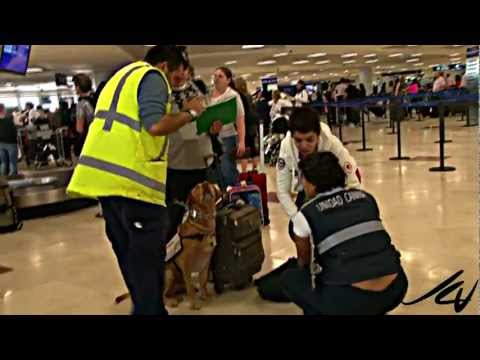 Contraband  BUSTED - Cancun airport - YouTube HD