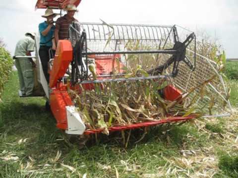 Máy gặt đập liên hợp KUBOTA tích hợp gặt ngô