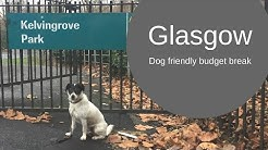 Glasgow - A Dog Friendly Budget Break