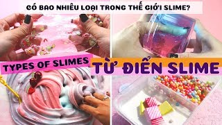 How Many Types of Slime in this World? Types Of Slimes