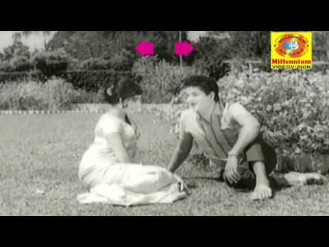 HOTEL HYRANGE  Malayalam Non Stop Movie Song   Hotel High Range   K. J. Yesudas, B Vasantha,