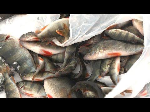 рыбаков нашли в саратовской области