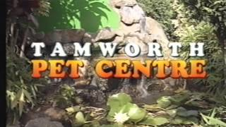 NBN Television Tamworth - Commercials And Presentation (6th November 1992)
