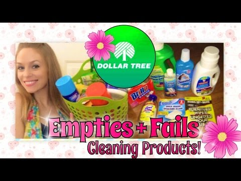 The BEST And WORST Dollar Tree Cleaning Products! | FabbTV