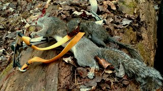 [GRAPHIC] Double Squirrel Kill with Slingshot! Cleaning\Cooking