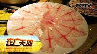 《农广天地》 20190613 草鱼要瘦身 桑枝育鲜菇  CCTV农业