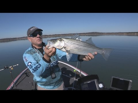 FOX Sports Outdoors SouthWEST #1 - 2016 Canyon Lake Texas Striper Fishing
