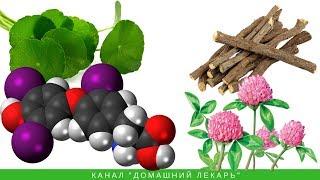 Травяной чай при гипотиреозе - Домашний лекарь - выпуск №189