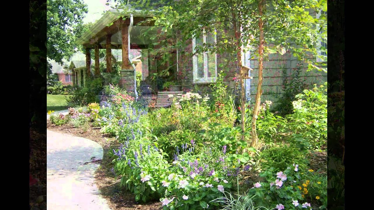 The Best Cottage Garden Plants 2016 YouTube