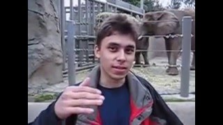 """Me at the zoo"" (sub. español) (EL PRIMER VIDEO DE YOUTUBE)"