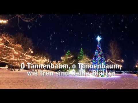 O Tannenbaum zum Mitsingen - Weihnachtslied mit Text