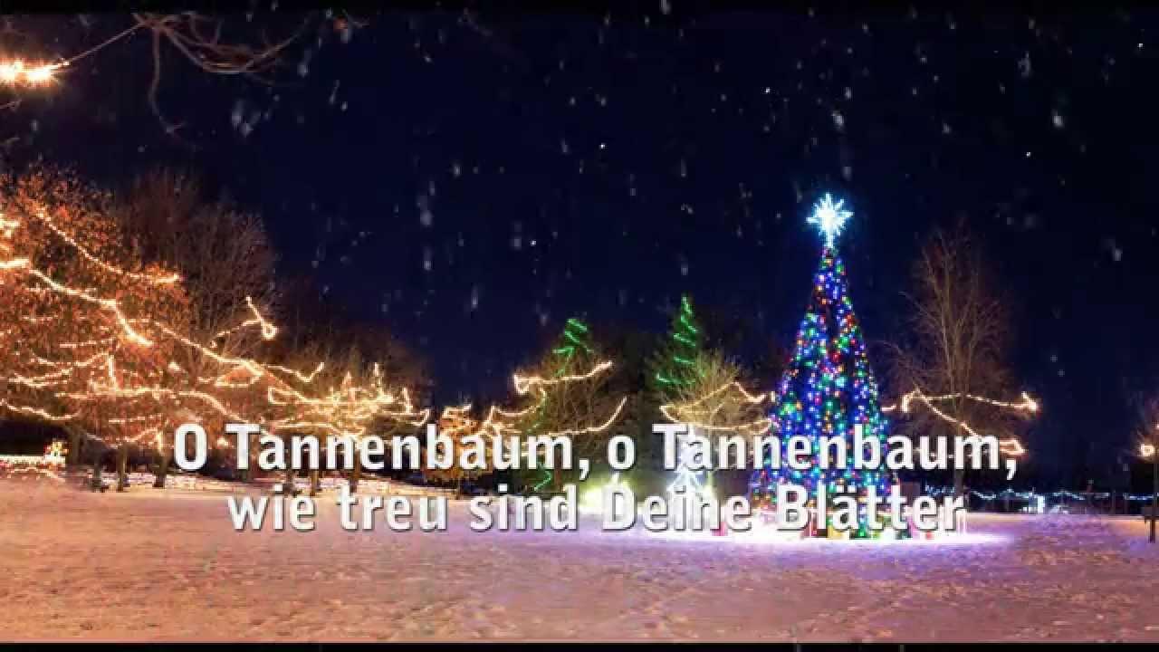 Liedtext O Tannenbaum.O Tannenbaum Zum Mitsingen Weihnachtslied Mit Text