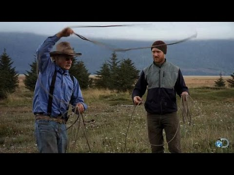 How to Rope a Cow   Alaska: The Last Frontier