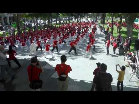 Group Simplified Tai Chi 24 routine performance