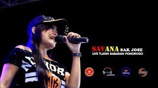 Download lagu ICHA KISWARA RINDU SERINDU RINDUNYA SAVANA sak jose LIVE TLASIH BABADAN PONOROGO MP3