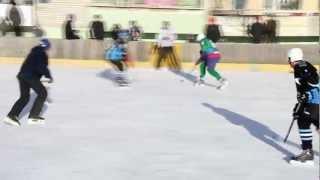 Чемпионат ЕАО по хоккею с шайбой