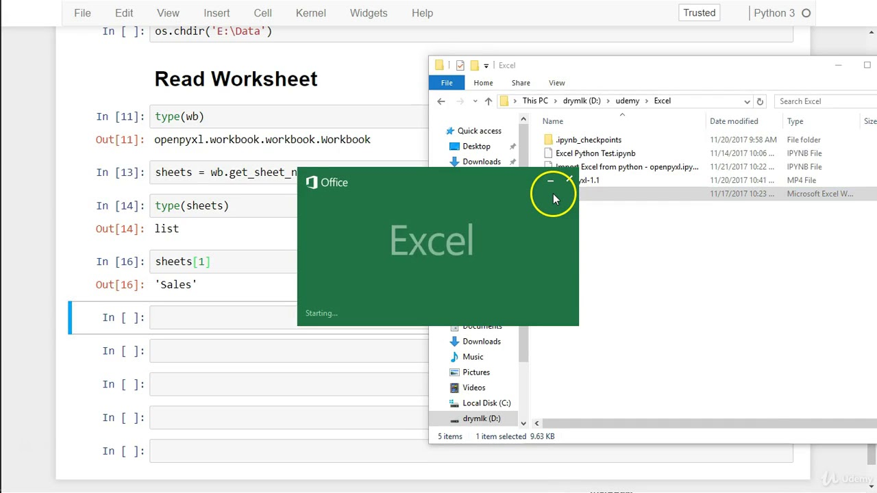 Automate Excel, Word, PDF, Web Scraping with Python and more : Read  worksheet