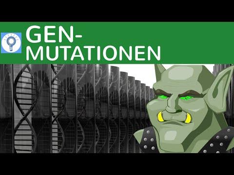 Genmutationen: HIV-Resistenz & Sichelzellenanämie - Zusammenfassung Mutationen - 5 | Genetik
