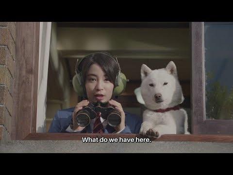 "White Family SoftBank Dog CM #400. ""Enter, Student Discount-sensei"" Japanese Commercial [ENG SUB]"