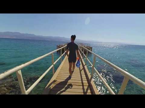 Red Sea Snorkeling - Princess Beach, Eilat, Israel 2020 February