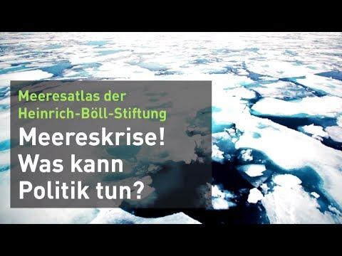 Meereskrise - was kann die Politik tun?