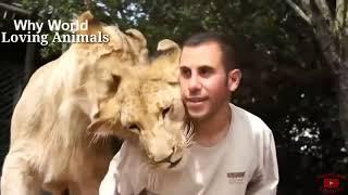 Как животные выражают благодарность своим работодателям - Это животные, доброжелательные к работодат