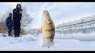 Зимова риболовля.Що? Де? Коли? Як піти від НУЛЯ. Як зловити рибу?!