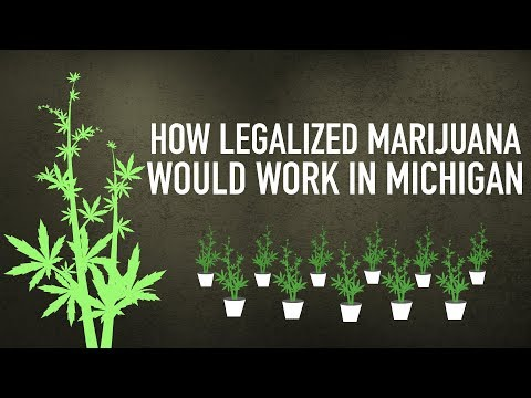 How legalized marijuana would work in Michigan